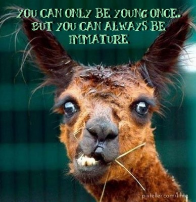 You can only be young once. but you can always be immature