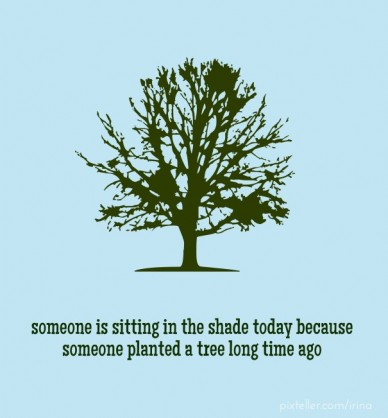 Someone is sitting in the shade today because someone planted a tree long time ago