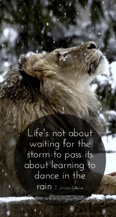 Life's not about waiting for the storm to pass its about learning to dance in therain : vivian greeneber collins www.symphonyofhealth.ie