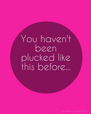 You haven't been plucked like this before...