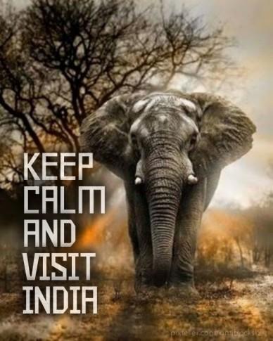 Keep calmandvisit india