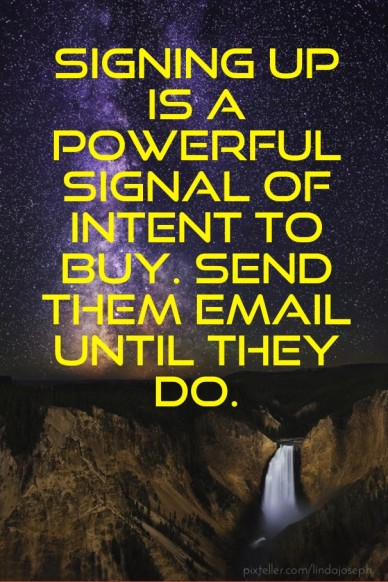 Signing up is a powerful signal of intent to buy. send them email until they do.