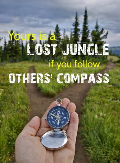 Yours is a lost jungle if you follow others' compass