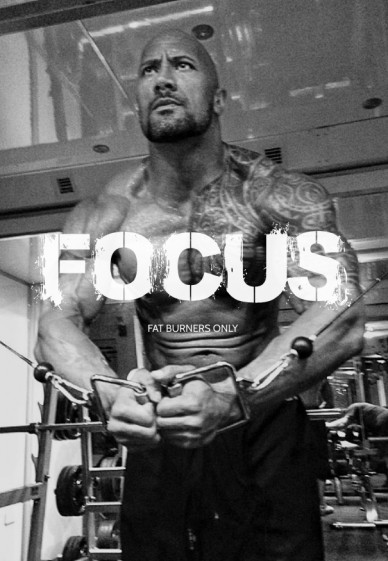 Focus fat burners only