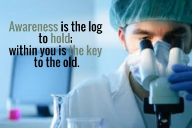 Awareness is the log to hold; within you is the key to the old.