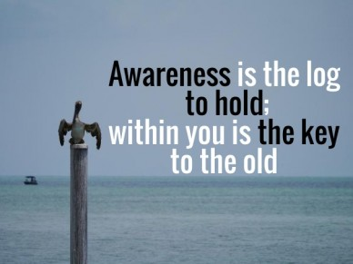 Awareness is the log to hold; within you is the key to the old