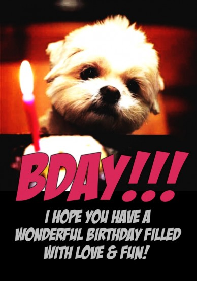 I hope you have a wonderful birthday filled with love & fun! bday!!! RePix to change message