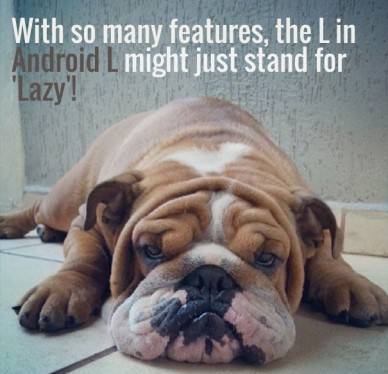 With so many features, the l inandroid l might just stand for'lazy'!
