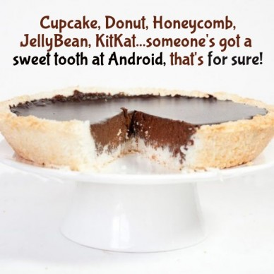 Cupcake, donut, honeycomb, jellybean, kitkat...someone's got a sweet tooth at android, that's for sure!