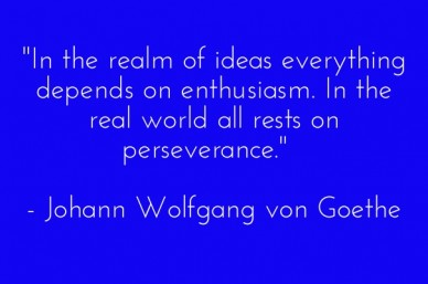 """in the realm of ideas everything depends on enthusiasm. in the real world all rests on perseverance."" - johann wolfgang von goethe"