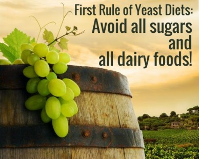 First rule of yeast diets: avoid all sugars andall dairy foods!