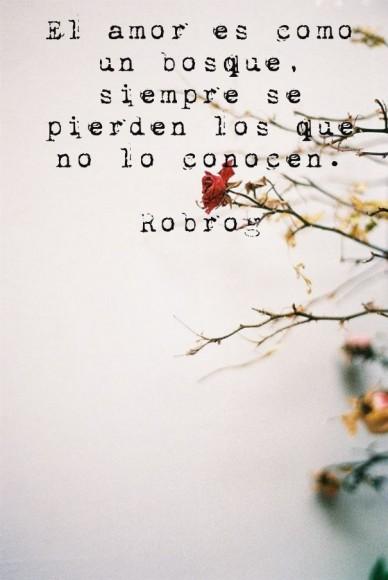 El amor es como un bosque, siempre se pierden los que no lo conocen. robrog