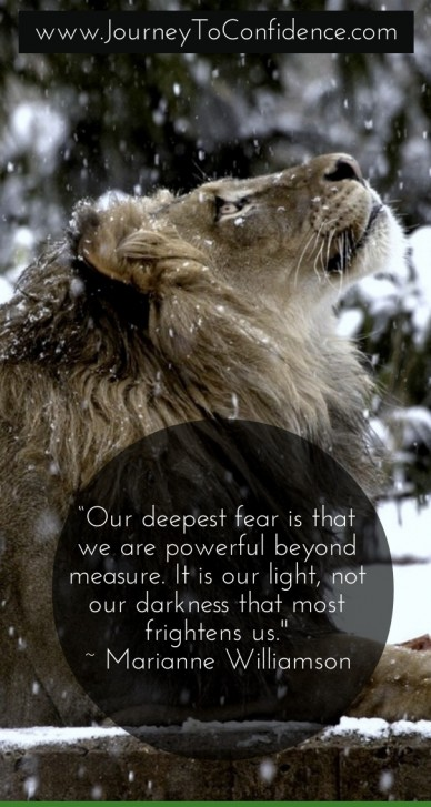 """our deepest fear is that we are powerful beyond measure. it is our light, not our darkness that most frightens us."" ~ marianne williamson www.journeytoconfidence.com"