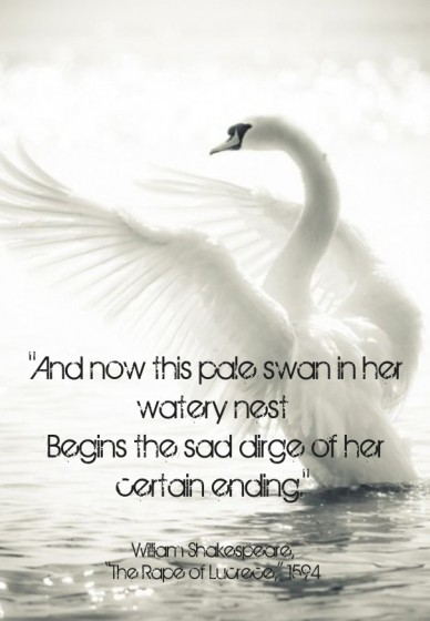 """and now this pale swan in her watery nest begins the sad dirge of her certain ending."" william shakespeare, ""the rape of lucrece,"" 1594"