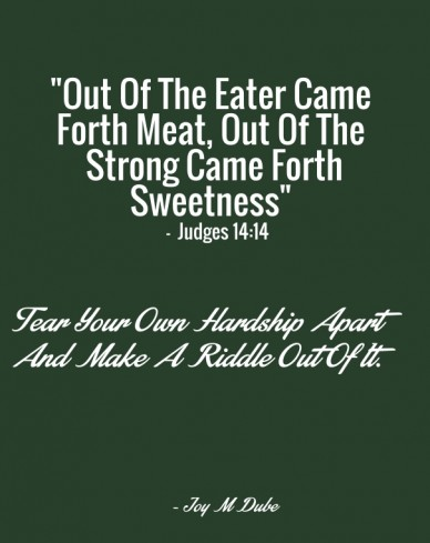"""out of the eater came forth meat, out of the strong came forth sweetness"" - judges 14:14 tear your own hardship apart and make a riddle out of it. - joy m dube"
