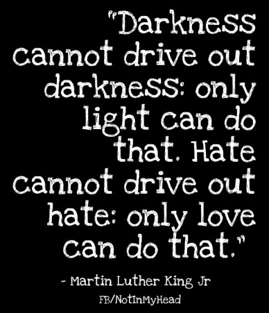 """darkness cannot drive out darkness: only light can do that. hate cannot drive out hate: only love can do that."" - martin luther king jr fb/notinmyhead"