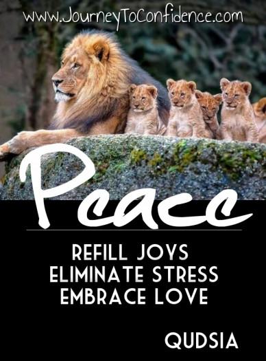 Peace refill joys eliminate stressembrace love qudsia www.journeytoconfidence.com