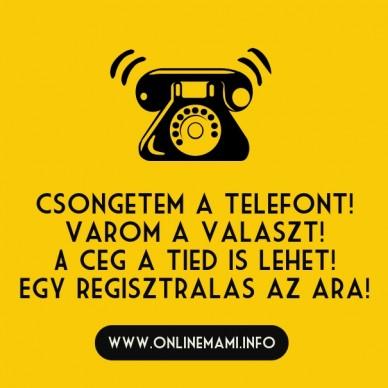Csongetem a telefont! varom a valaszt! a ceg a tied is lehet! egy regisztralas az ara! www.onlinemami.info