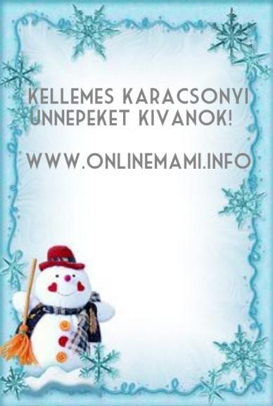Kellemes karacsonyi unnepeket kivanok! www.onlinemami.info