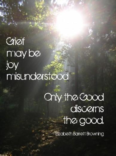 Grief may be joy