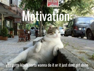 Motivation: you gotta kinda sorta wanna do it or it just dont get done