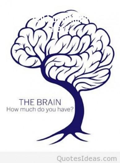 Brain intelligence new art quote http://quotesideas.com/brain-intelligence-new-art-quote/