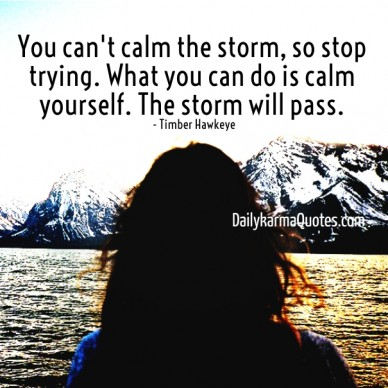 You can't calm the storm, so stop trying. what you can do is calm yourself. the storm will pass. dailykarmaquotes.com - timber hawkeye