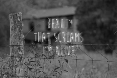 "Beauty that screams""i'm alive"""