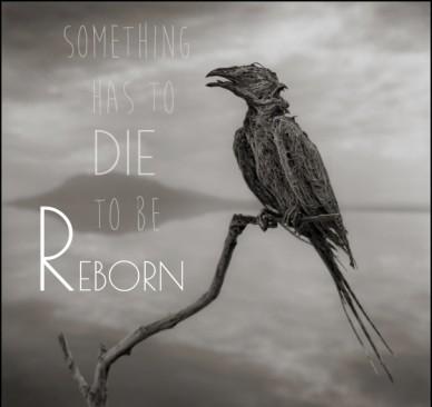 Something has to die to be reborn