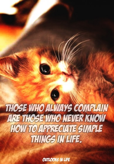Those who always complain are those who never know how to appreciate simple things in life. outlooks in life