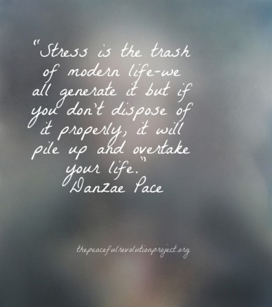 """""""stress is the trash of modern life-we all generate it but if you don't dispose of it properly, it will pile up and overtake your life."""" ― danzae pace thepeacefulrevolutionpro"""