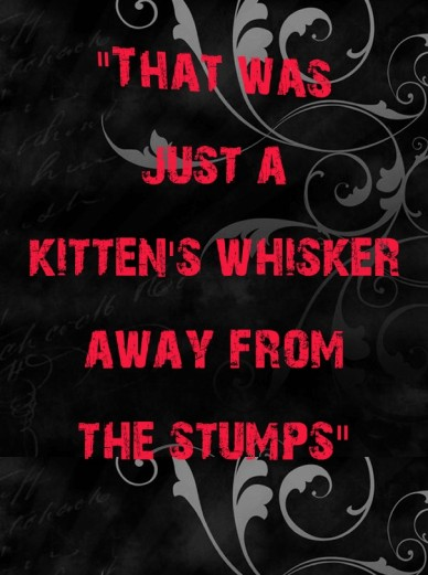 """""""that was just a kitten's whisker away from the stumps"""""""