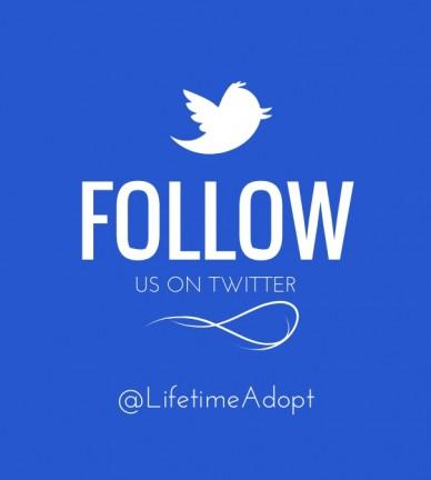 Follow us on twitter @lifetimeadopt