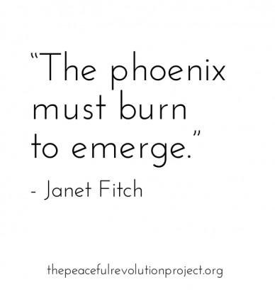 """""""the phoenix must burn to emerge."""" - janet fitch thepeacefulrevolutionproject.org"""