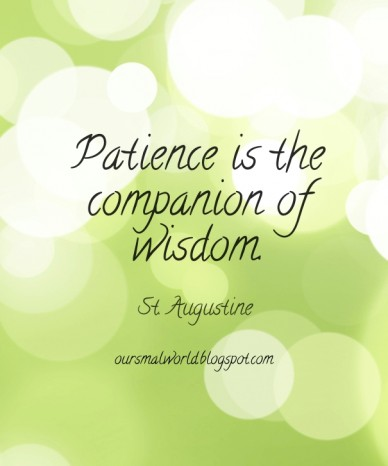 Patience is the companion of wisdom. st. augustine oursmalworld.blogspot.com