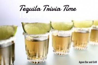 Tequila trivia time tequila trivia time agave bar and grill