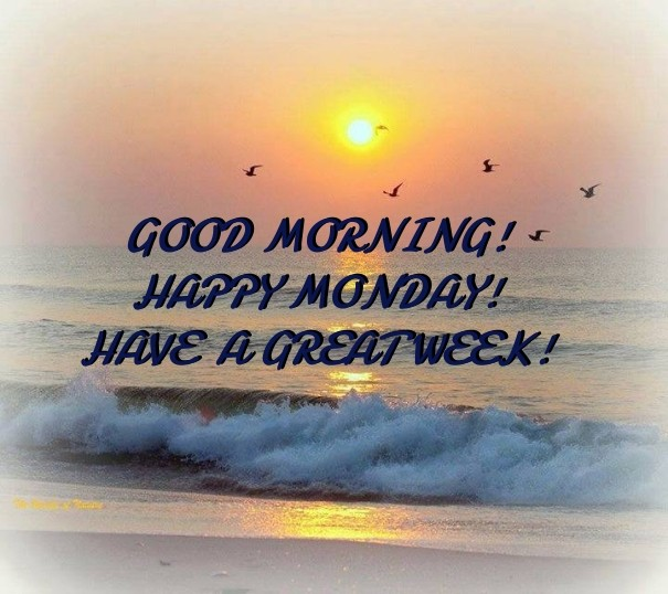 Good Morning Happy Monday Have A Image Customize Download It
