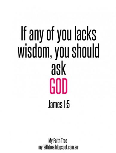 If any of you lacks wisdom, you should ask god james 1:5 my faith tree myfaithtree.blogspot.com.au