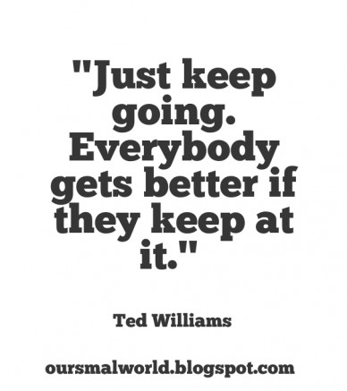 """""""just keep going. everybody gets better if they keep at it."""" ted williams oursmalworld.blogspot.com"""