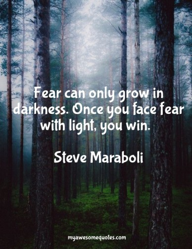 Fear can only grow in darkness. once you face fear with light, you win. steve maraboli myawesomequotes.com