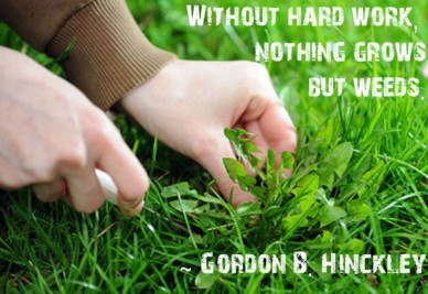 Without hard work, nothing growsbut weeds. ~ gordon b. hinckley