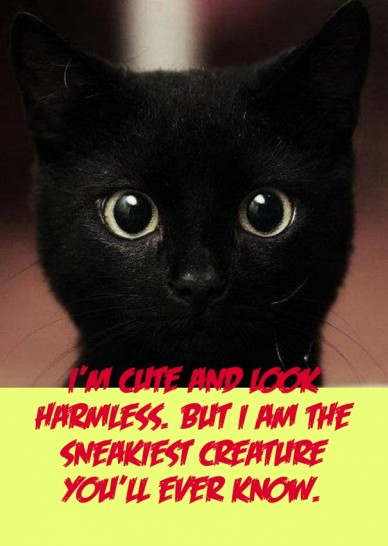 I'm cute and look harmless. but i am the sneakiest creature you'll ever know.