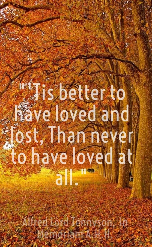 better to have loved and lost than