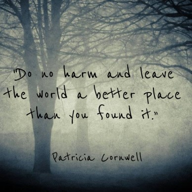"""do no harm and leave the world a better place than you found it."" ― patricia cornwell"