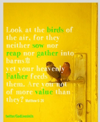 Look at the birds of the air, for they neither sow nor reap nor gather into barns; yet your heavenly father feeds them. are you not of more value than they? matthew 6: 26 twit