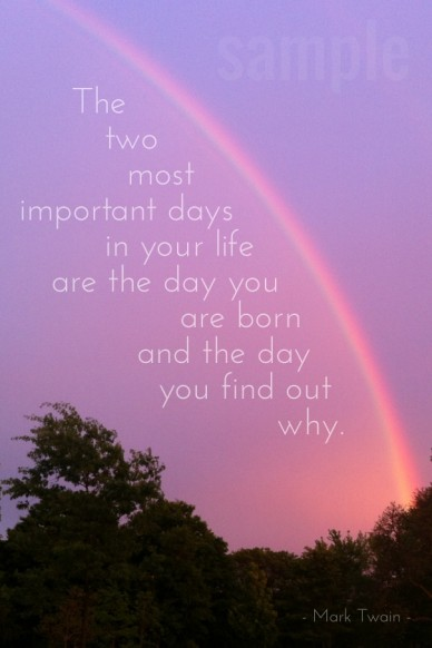 The two most important days in your life are the day you are born and the day you find out why. - mark twain - sample
