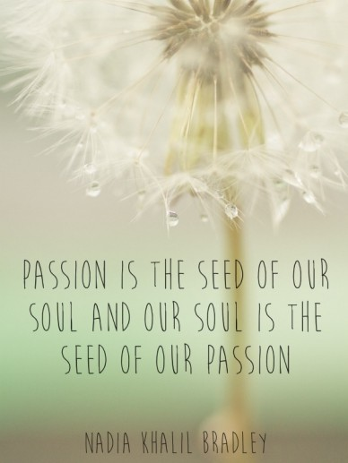 Passion is the seed of our soul and our soul is the seed of our passion nadia khalil bradley