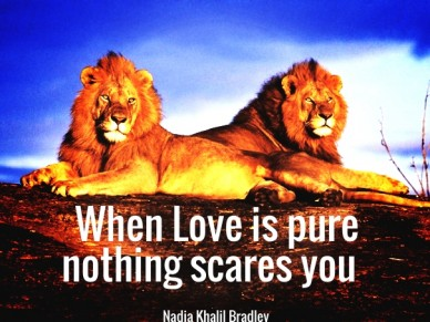 When love is pure nothing scares you nadia khalil bradley