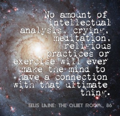 No amount of intellectual analysis, crying, meditation, religious practices or exercise will ever make the mind to have a connection with that ultimate thing. eelis laine: the