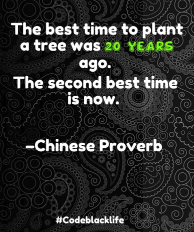 The best time to plant a tree was 20 years ago. the second best time is now. –chinese proverb #codeblacklife